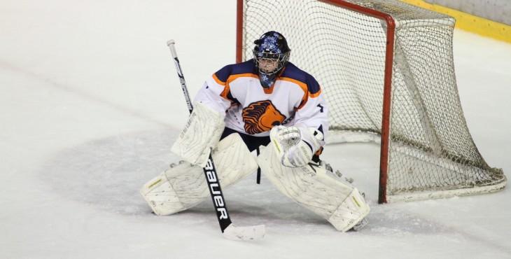 ice-hockey-263713_1280