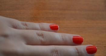 hand-339719_1280