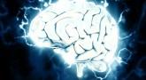 brain-1845962_1280