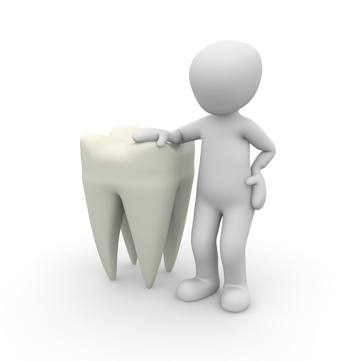 Smile 101: What Are the Different Parts of a Tooth?