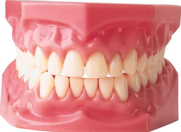 Can Gingivitis Be Reversed?
