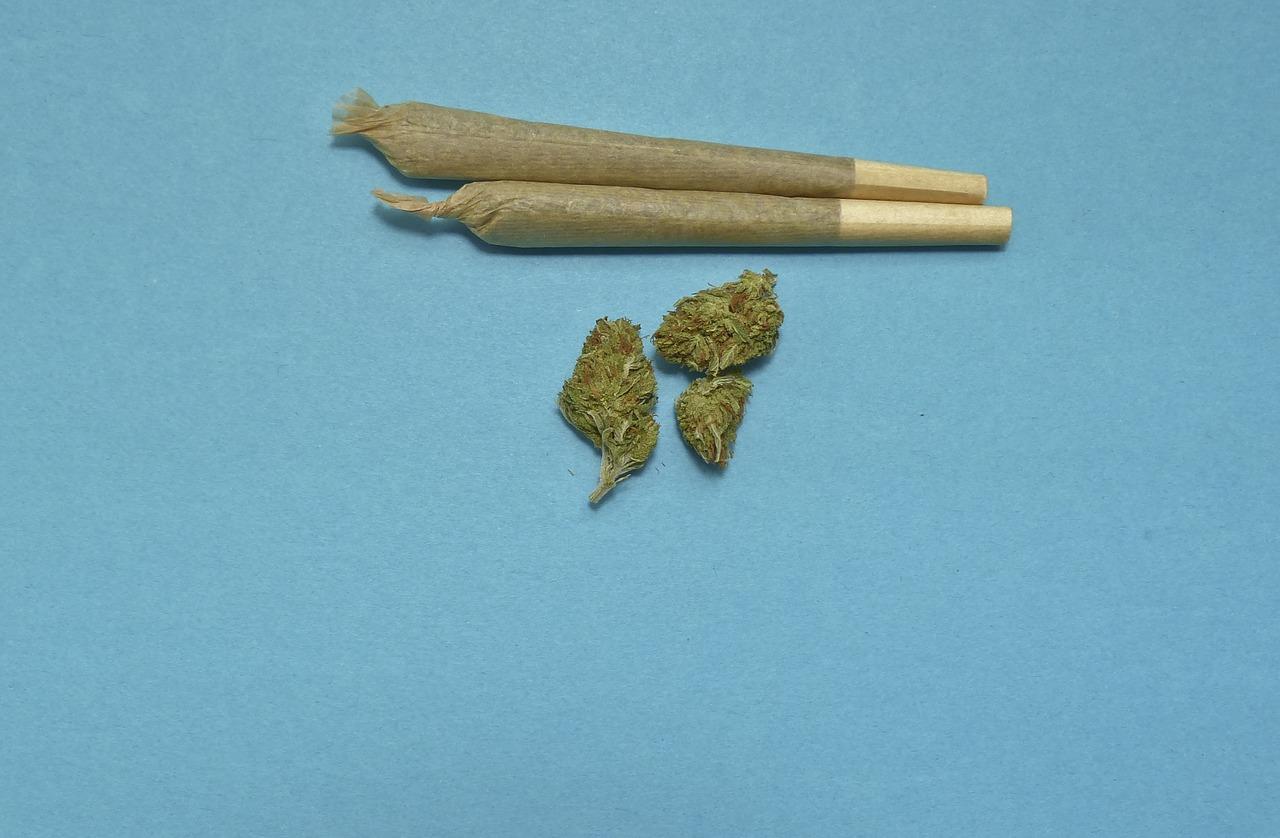 What Is the Impact of Marijuana on Dental Health?